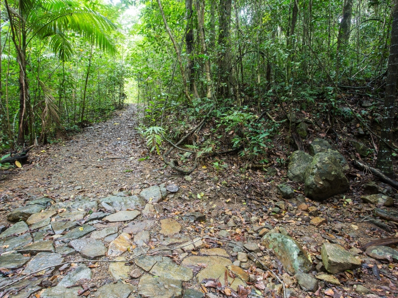 CONWAY CIRCUIT (WHITESUNDAY GREAT WALK), QLD